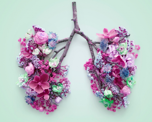 sticks and flowers shaped to form lungs