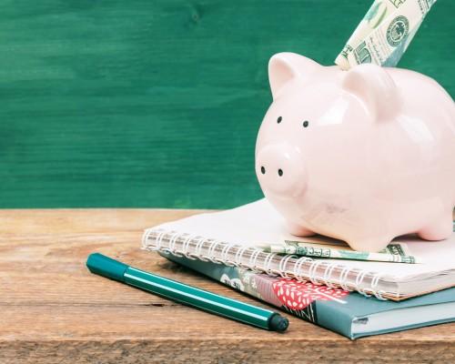 Money being put on a piggy bank